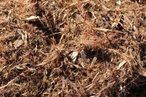 Red Wood Mulch