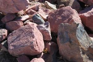 Garden Rock Boulders (Multi Color)